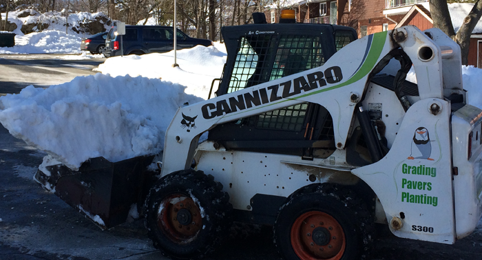 Cannizzaro Snow Removal