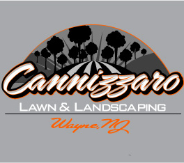 https://cl-landscaping.com/wp-content/uploads/2015/05/cannizzaro-landscaping-logo11.jpg